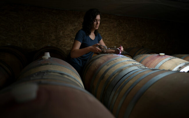 Filling barrels at Brittan Vineyards